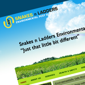 Snakes-and-Ladders-Environmental-Pest-Services